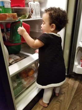 Getting Into Refrigerator2