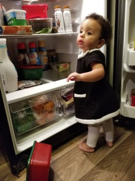 Getting Into Refrigerator3